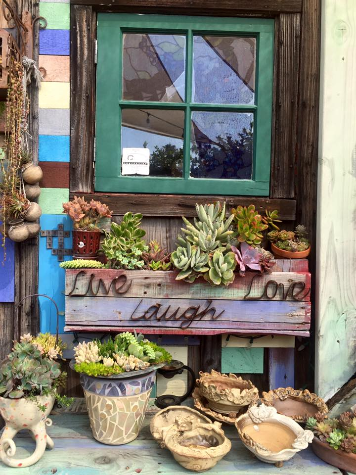Succulent Cafe Carlsbad